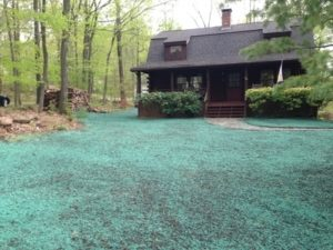 CT Hydroseeding Project 10