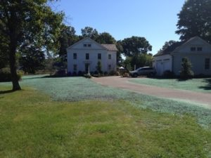 CT Hydroseeding Project 11