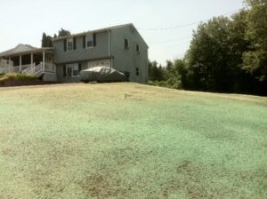 CT Hydroseeding Project 17