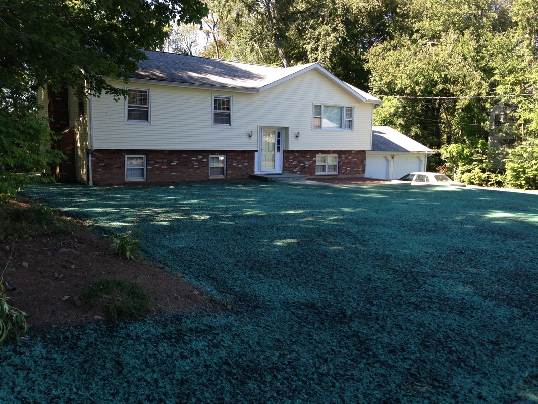 CT Hydroseeding Project 1b