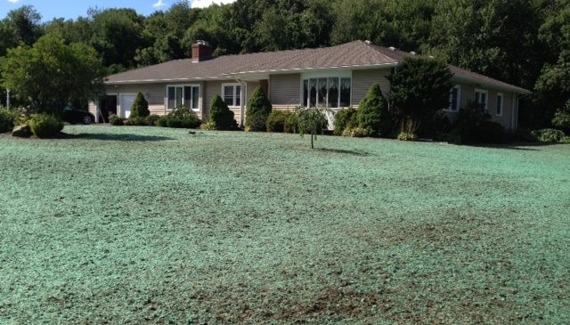 CT Hydroseeding Project 24b