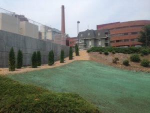 CT Hydroseeding Project 27