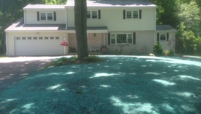 CT Hydroseeding Project 31b
