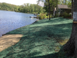 CT Hydroseeding Project 33