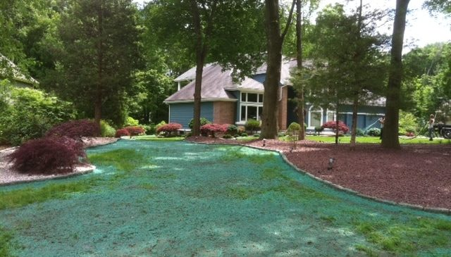 CT Hydroseeding Project 3a