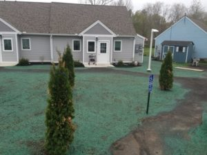 CT Hydroseeding Project 5