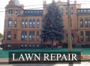 CT Lawn Repair Services