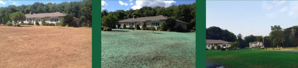 Hydroseeding Process CT