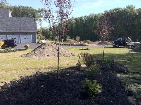 Lawn Installation Services in Connecticut
