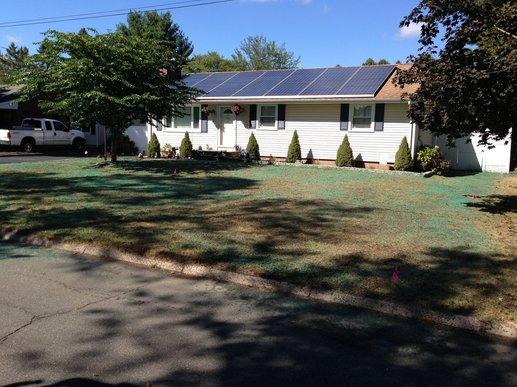 Lawn Repair Services 2